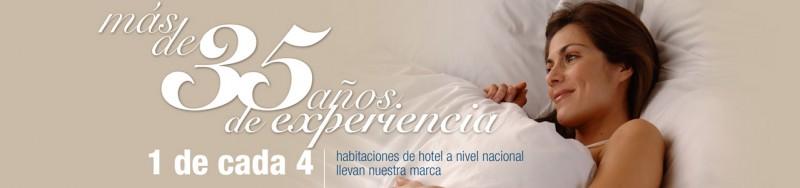 Hotel Sin Login 1